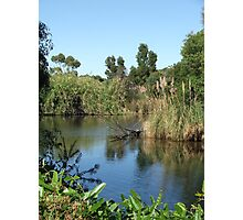 Lake View (5721) Photographic Print