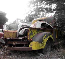 Old Rusted Pickup Trucks by RustedStudio