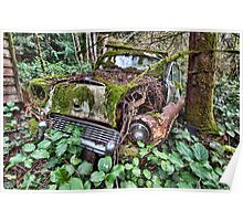 Reclaimed by Nature Poster