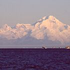 Alaskan Halibut Fishing  by Wayne Hughes