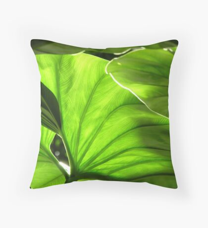 Green - Garfield Park Conservatory Throw Pillow