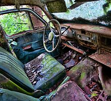 Car in the woods, Front Seat by toby snelgrove  IPA