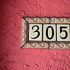 305 by Lynne Prestebak