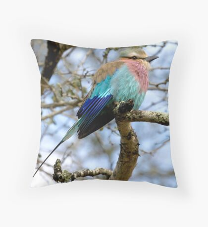 Lilac Breasted Roller On A Chilly Morning Throw Pillow