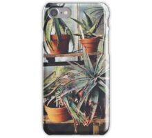 Cactus Wall iPhone Case/Skin