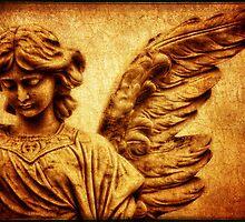 Angel No 3 by Stephen Morris