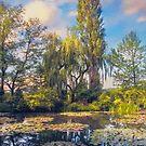 Giverny by John Rivera