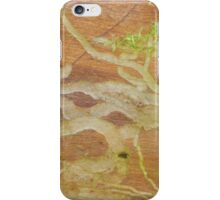 Insect meanderings iPhone Case/Skin