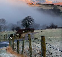 Creeping Mist by Jeanie