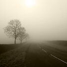 The Road by Mike Topley
