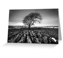 Malham Tree Greeting Card