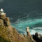 Lighthouse at Cape Point by fortheloveofit