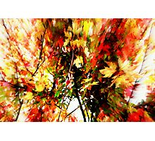 Two Second Fall Photographic Print