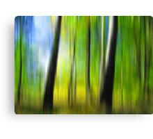 Forest lines Canvas Print