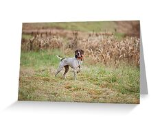 GERMAN SHORT-HAIRED POINTER ON POINT  Greeting Card