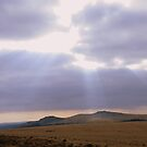 Dartmoor: Light Over the Moor by Rob Parsons