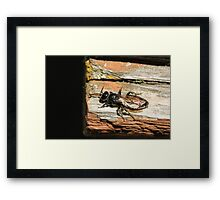 Insect and Table 4 Framed Print