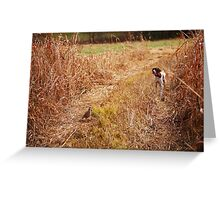 STAND OFF Greeting Card