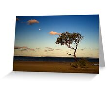 Big tree, small moon - Wellington Point, Queensland Greeting Card