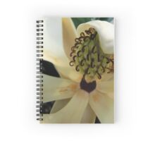 Transpire Spiral Notebook