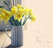 Daffodils by Sid Black