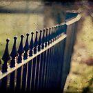 Fence No.4 by Sid Black