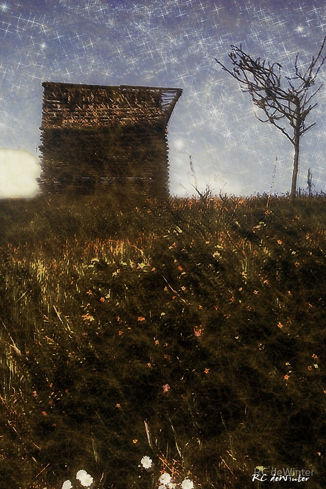 Over the Hill by RC deWinter