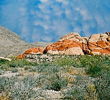 Red Rock Canyon, Nevada, Postcard by trevortrent