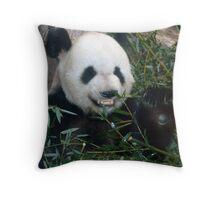 Panda at The Memphis Zoo Throw Pillow