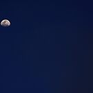 Moon Night by photoloi