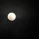 Full Moon by MichelleR