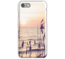 Dune grass in the sunset iPhone Case/Skin