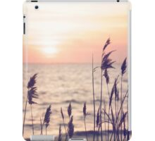 Dune grass in the sunset iPad Case/Skin