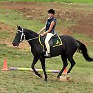 Stock Horse working at Lardner Park, Warragul, Vic by Bev Pascoe