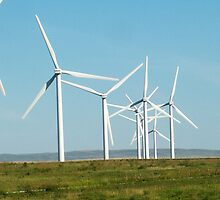 Wind Farm by Darcy Overland