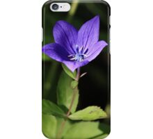 Blue Harebell iPhone Case/Skin