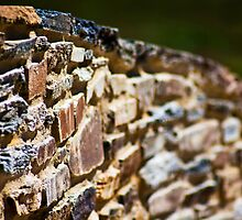 Old Bricks, New Life by Vince Russell