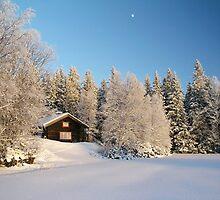 Cabin by ibphotos