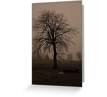Foggy Tree Greeting Card