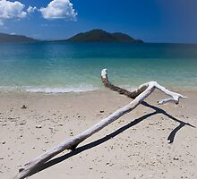 fitzroy island, north queensland by col hellmuth
