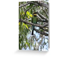 Honey Bee Eater Greeting Card