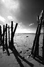 Old Fishing Harbour by Nigel Bangert