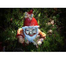 One of these creepy looking garden gnomes Photographic Print