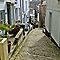 Brick or Cobblestone Walkway or Road