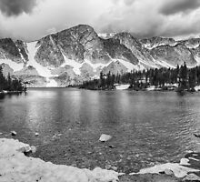 Medicine Bow Lake View in Black and White by Bo Insogna