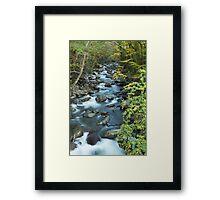 West Prong Little Pigeon River  Framed Print