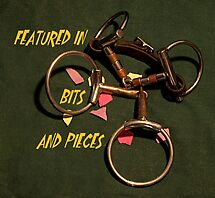 Bits and Pieces by Barb Miller