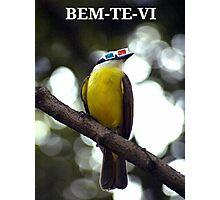 Bem-te-vi Photographic Print