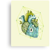 Unlock Canvas Print