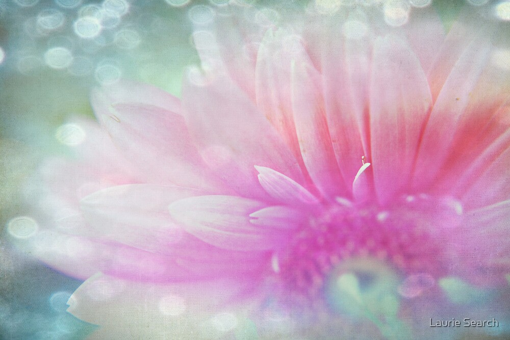 Your Light by Laurie Search